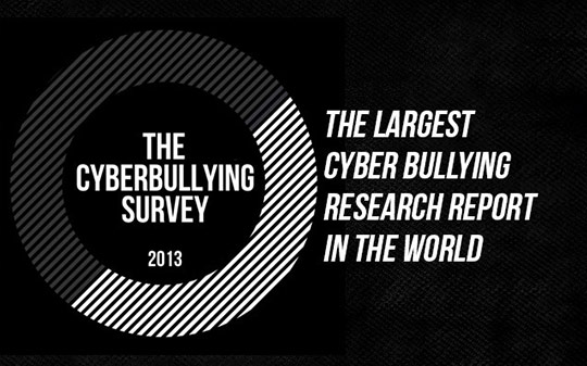 the-cyberbullying-survey
